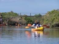 kayak maison de la nature le teich