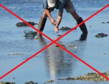 24/04/15 Pas de pêche de coquillages sur le Bassin, des contrôles routiers renforcés ce week-end, et pas de livre à Andernos...