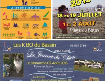 affiches sorties 1 et 208