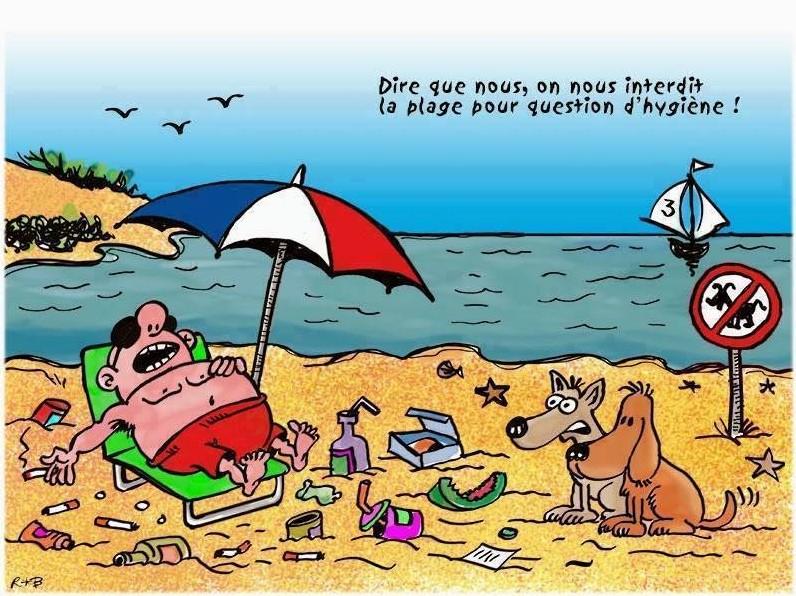 plage interdite avec gros