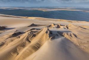 Dune et arguin CV 6