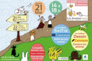 week end des animaux