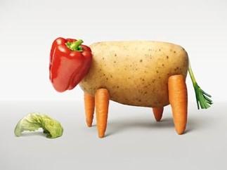 vegan vache