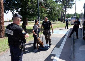controle gendarme et chien