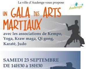 gala arts martiaux audenge