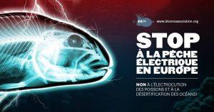 stop peche electrique