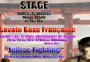 biganos stage boxe f
