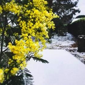neige lanton cla route