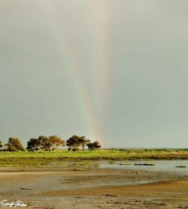 arc en ciel sandy