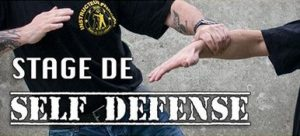 stage self defense audenge