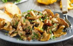lyselotte champignons giroles cuits
