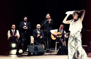 flamenco ares