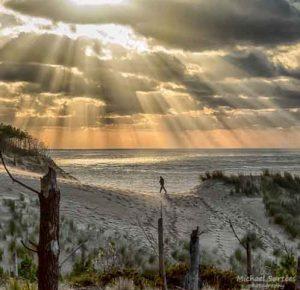michael surtees dunes ocean