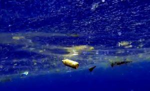bourgnon sea cleaner plastic 2
