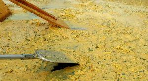 omelette lanton gros plan