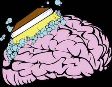 cerveau brosse