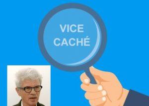 vice cache loupe siret