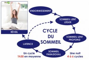 cycle sommeil idp filipe