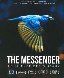 the messenger le sience des oiseaux