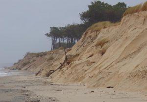 fabien tempete dune la teste sophie