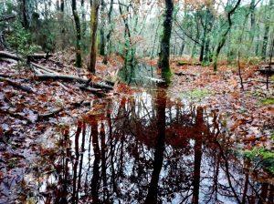 saturation fosses ruisseaux inondation