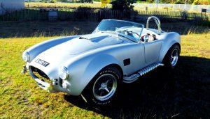 SLR Cobra verges