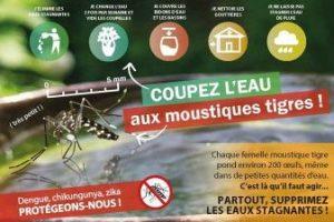 moustique tigre ARS