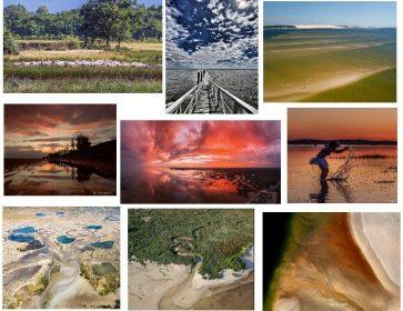 mozaique photos infobassin