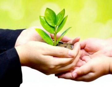 SIC ESG plante