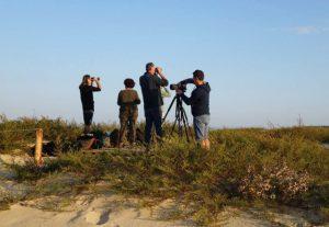 observation oiseaux cap ferret lpo