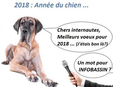chien ITW mod Année 2018