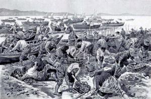 CaptureHDB Confoulan ramassage huitre 1901