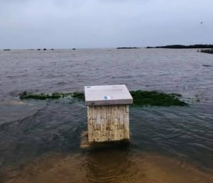 inondation GUjan philippe michel