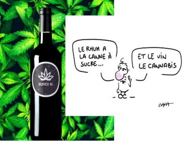 vin cannabis burdi W et dessin gafa