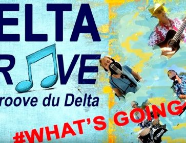 delta groove youtube whats going on 2