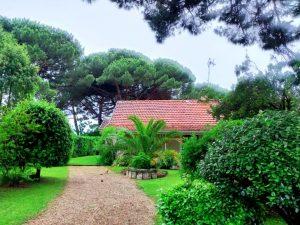 location maison palmier
