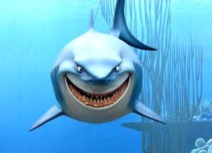 requin dessin