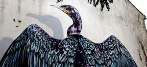 street art la teste cormoran